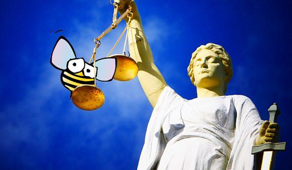 Rechtliches für Imker